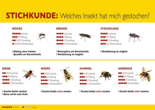 "Quellenangabe: ""obs/ALK-Abelló Arzneimittel GmbH"""